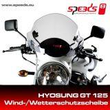Windschild SPEEDS für Hyosung Modelle leicht getönt